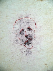 gaļas dēlis - portrets